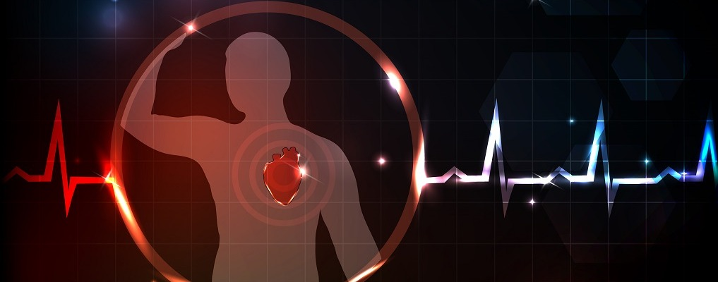 Bright silhouette of human and heart. Normal heart beat cardiogram. Abstract medical wallpaper.