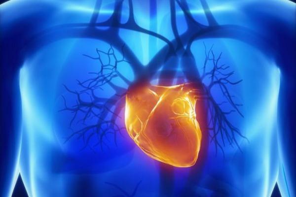 Наследственность, сердечные заболевания и инсульт